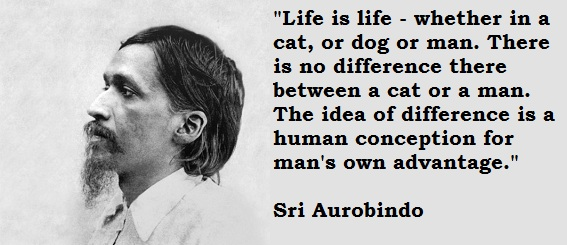 Sri Aurobindo | Meditation and Philosophy