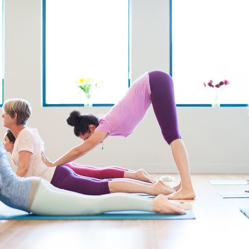 Bhujangasana   Adjustment   Purna Yoga Asheville, NC