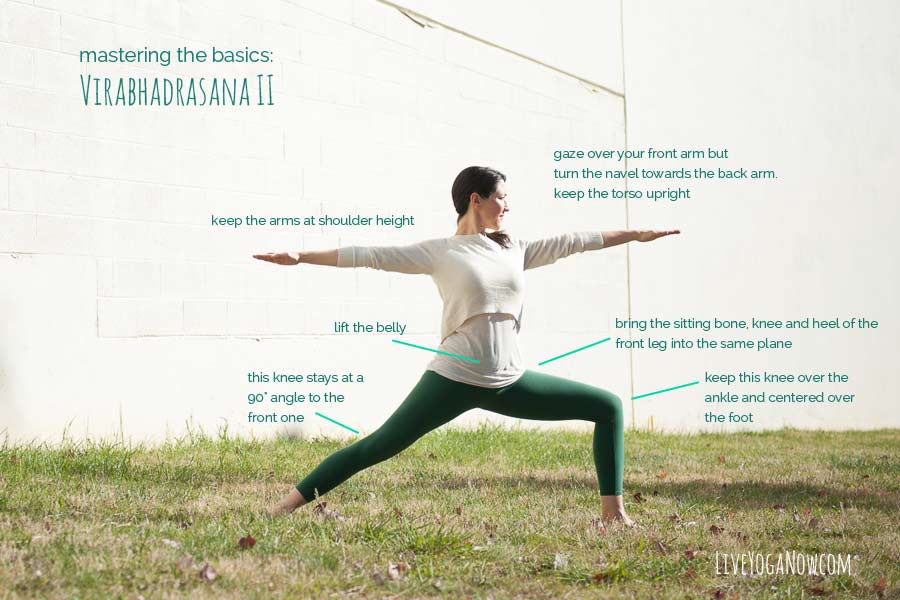 Virabhadrasana 2 | Live Yoga Now