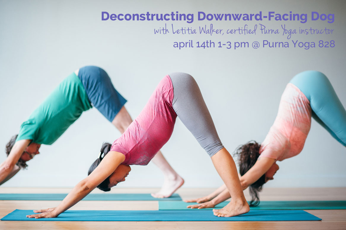 Deconstructing Downward Facing Dog   Purna Yoga 828