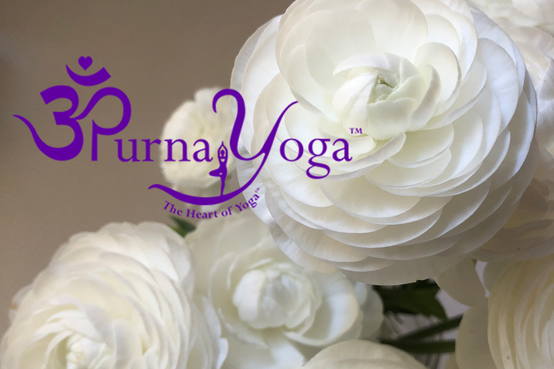 Purna Yoga College Teacher Training