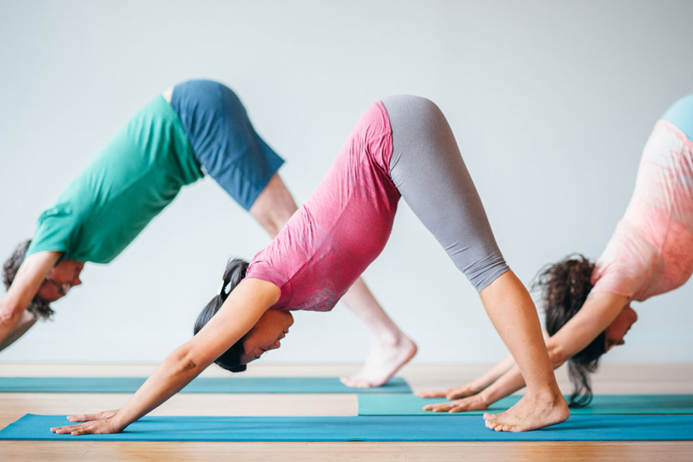 Deconstructing Downward-Facing Dog | Purna Yoga 828