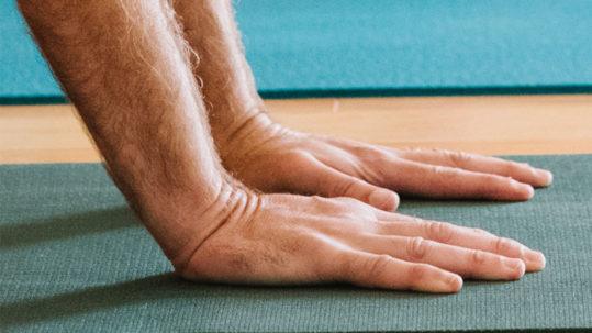 Yoga for Hands and Wrists | Purna Yoga 828