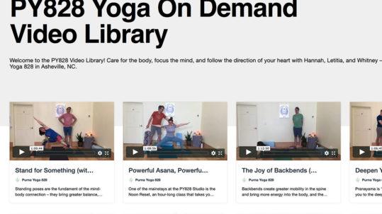 PY828 Video Library | Purna Yoga 828